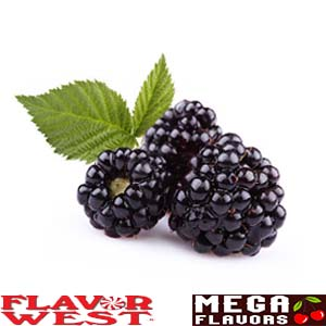BLACKBERRY - FW