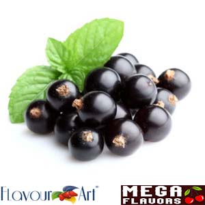 BLACKCURRANT - FA