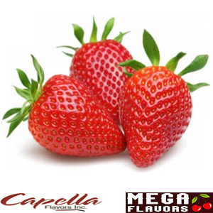 RIPE STRAWBERRIES - CAP