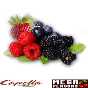 HARVEST BERRY - CAP