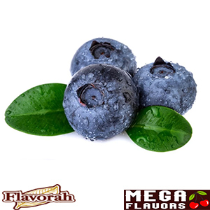 BLUEBERRY - FLV