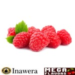 Raspberry Concentrate - Inw