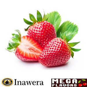 STRAWBERRY CONCENTRATE - INW